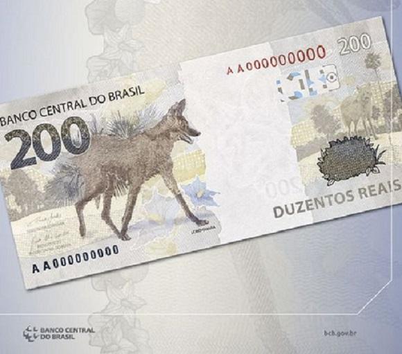 Nova nota chama a atenção para o lobo-guará