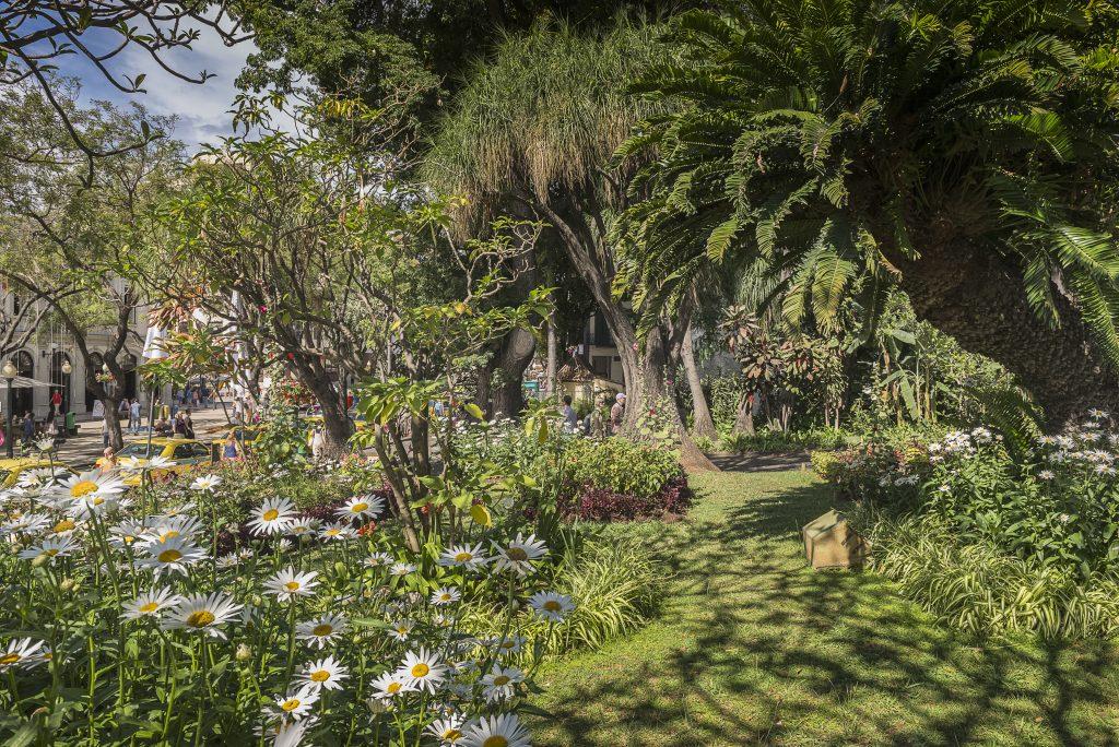 Os belos jardins da Ilha da Madeira