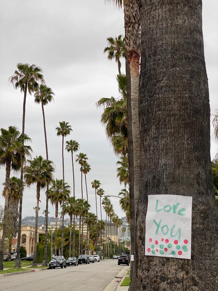 5 Dicas para visitar em Beverly Hills