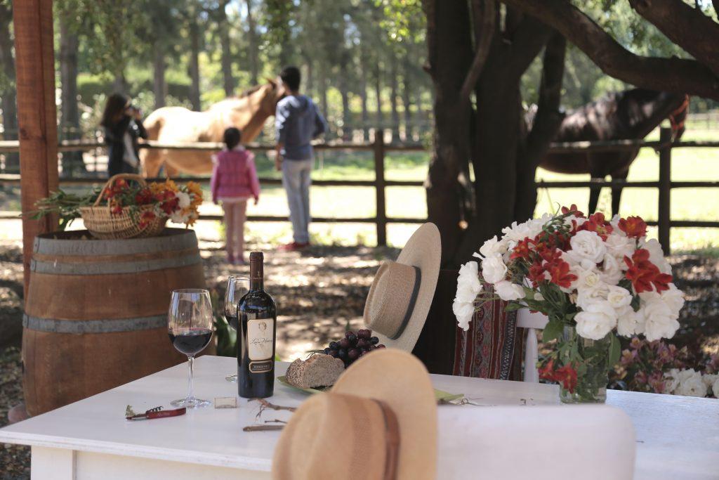 Vinícola familiar ganha 3 medalhas de Ouro no Brazil Wine Challenge