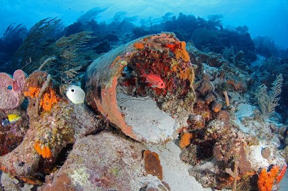 Curaçao melhor destino de mergulho no Caribe para 2021