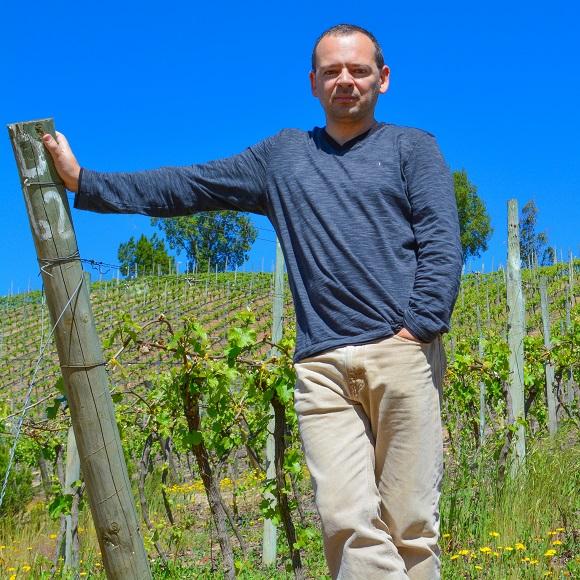 David Giacomini se consolida entre os melhores produtores de vinho no Chile