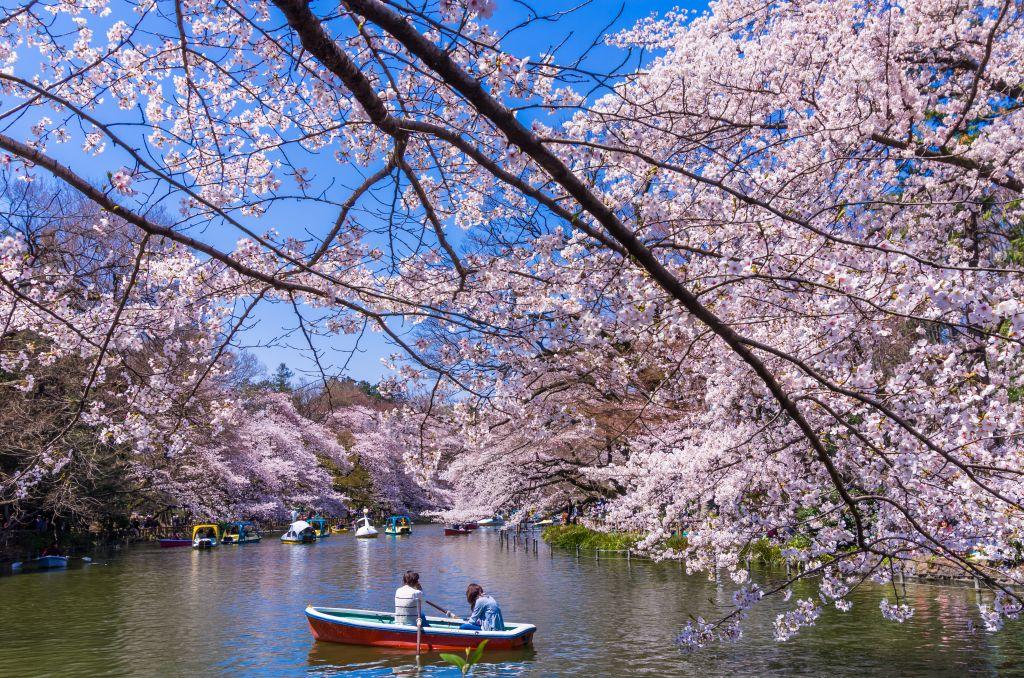 Lua de mel no Japão? São 6 razões para escolher o país para a viagem dos sonhos a dois